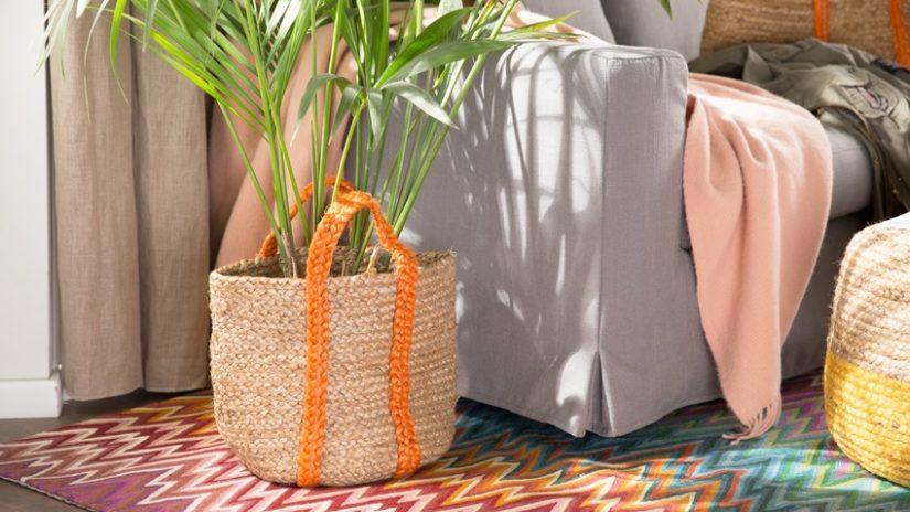 decoración con plantas de interior en cestas