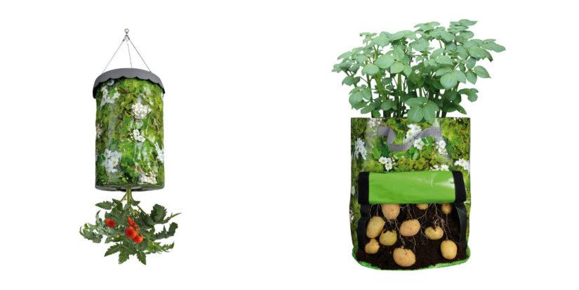 huerto ecológico en casa temporada