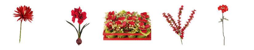 plantas rojas variedades