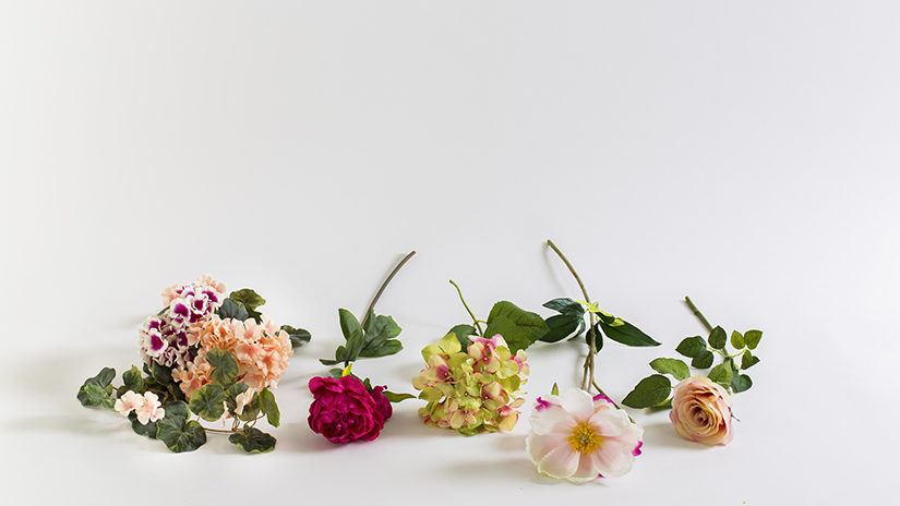 flores-secas