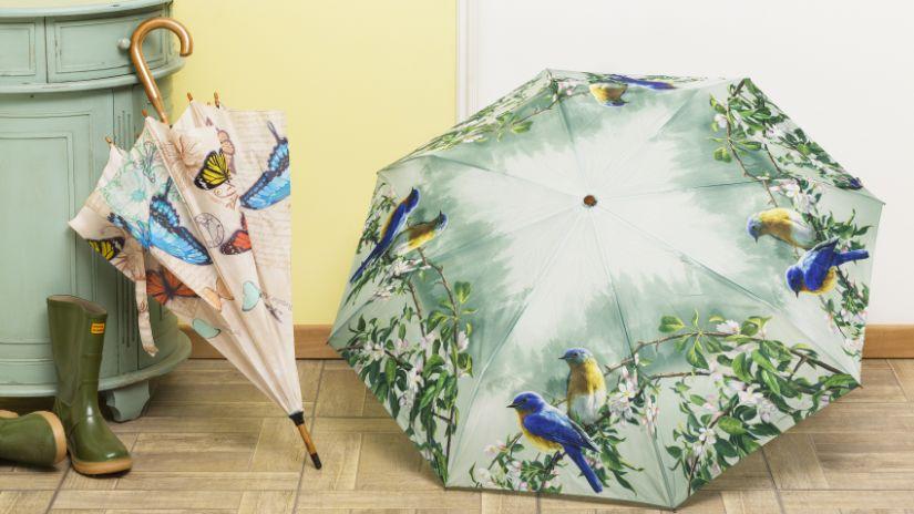 Parapluie vert dans une maison