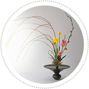 Découverte florale
