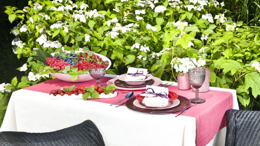 repas en extérieur - fruits et assiettes - nappe blanche