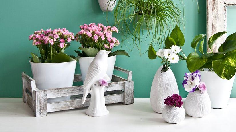 sculpture d'extérieur, sculpture extérieure, pots de fleur
