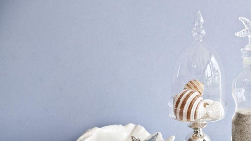Cloche en verre décorative avec coquillages