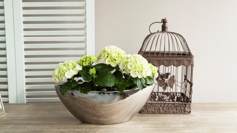 cage à oiseaux, cage à oiseaux décorative, cage à oiseaux déco, pot de fleurs