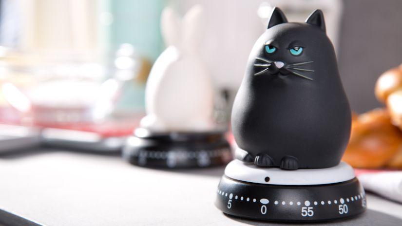 Minuteur mécanique en forme de chat