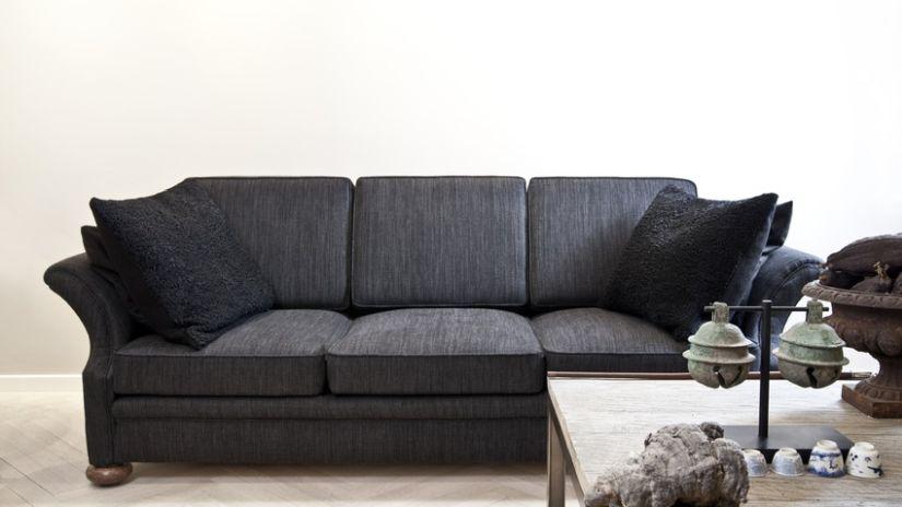 Coussins noirs en velours sur un canapé noir