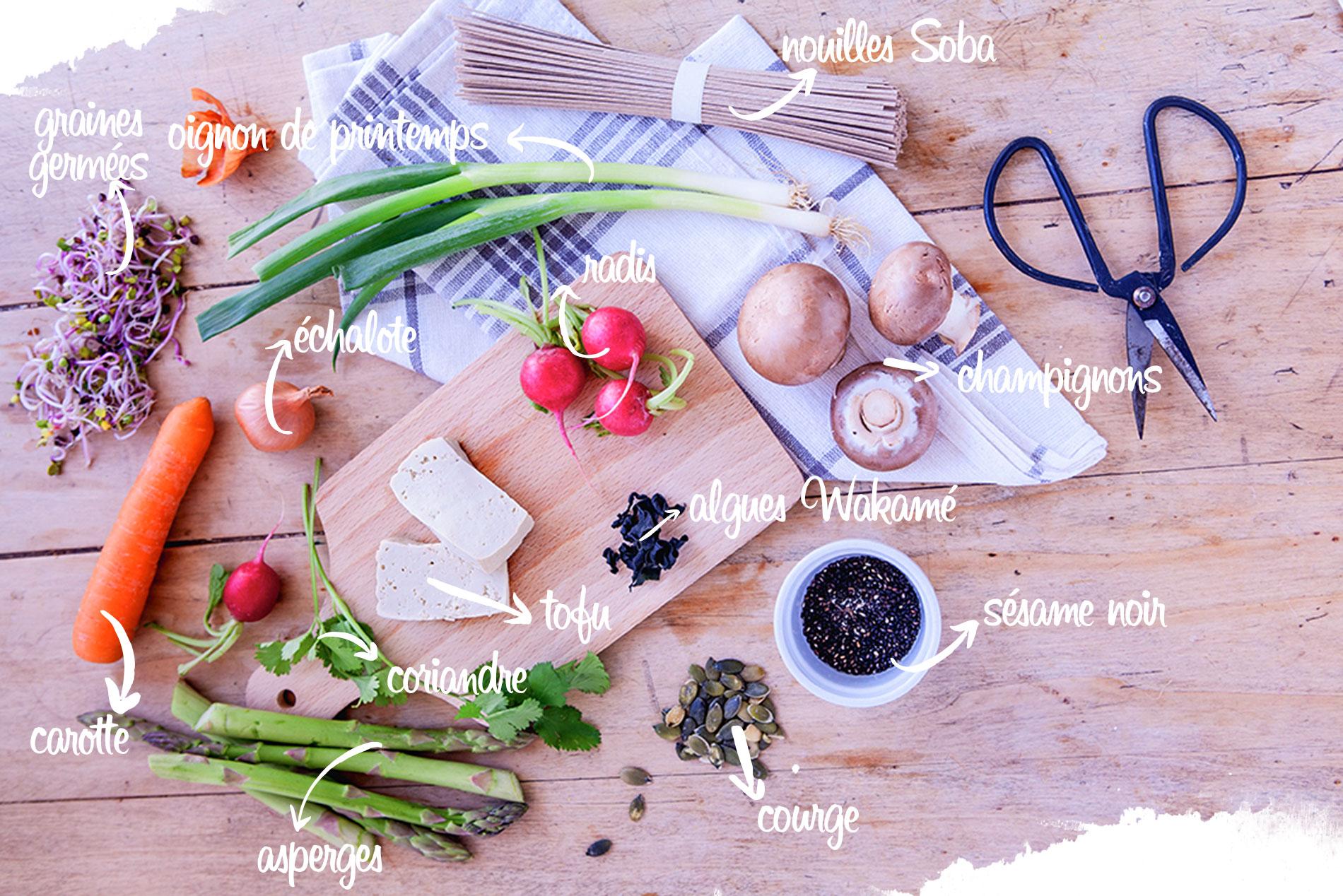 nouilles soba vegan de malak, recette vegan, recette japonaise, ingrédients