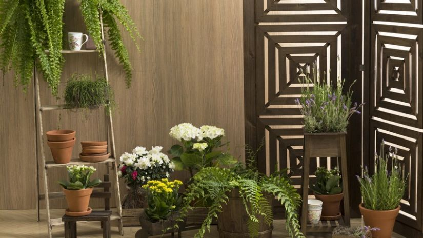 Jardinière en bois exotique