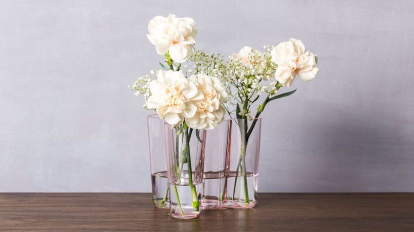 Vase transparent de forme originale