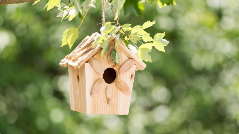idee per il giardino casetta per uccellini