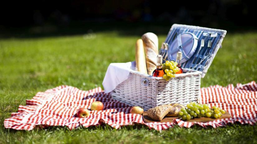 set da picnic tovaglia a quadretti
