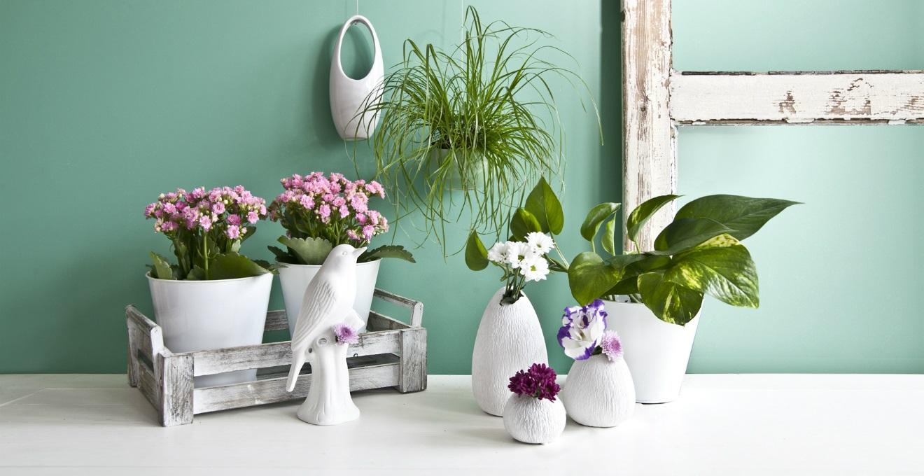 Vasi alti eleganti recipienti per i vostri fiori dalani - Portavasi da interno ...