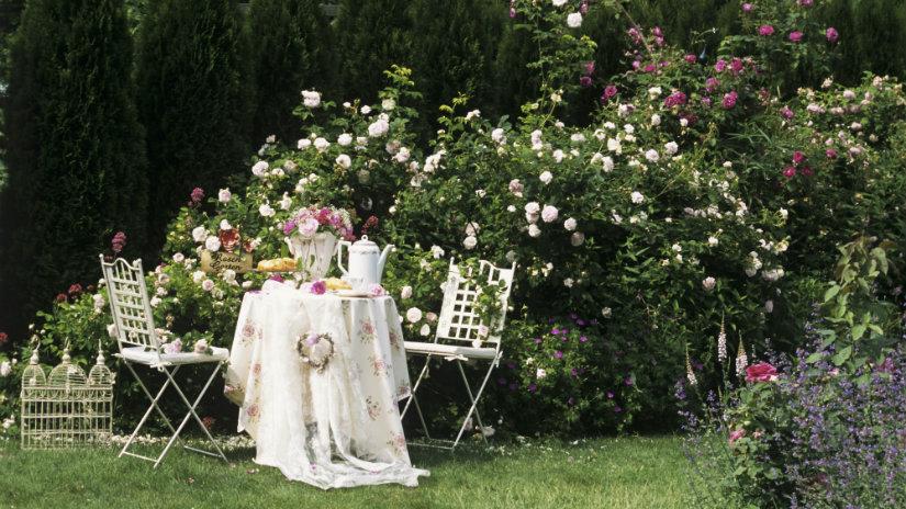 idee romantiche per san valentino giardino tavolo