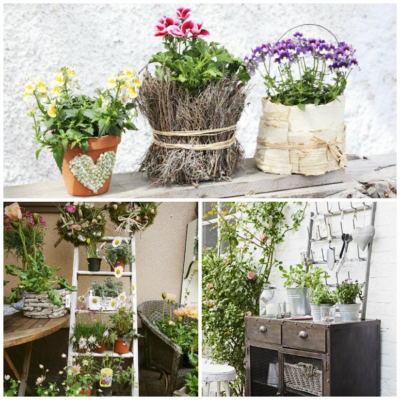 Vasi per piante semplicemente eleganti dalani e ora - Vasi con piante grasse ...