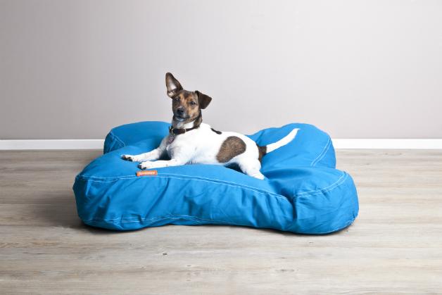 cuscino cane taglia grande casamia idea di immagine