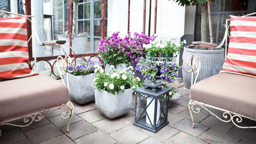 fioriere in cemento divani lanterne fiori