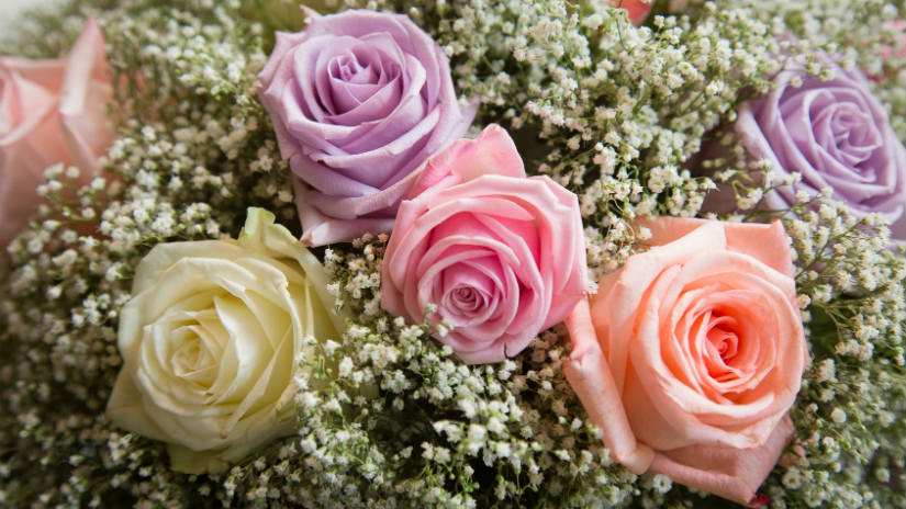 Favoloso DALANI | Regali per 25 anni di matrimonio: idee d'argento TI12