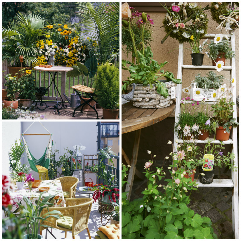 Vasi da balcone: verde in terrazzo - Dalani e ora Westwing