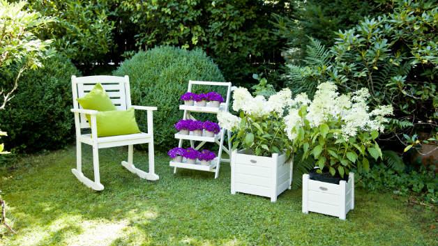 DALANI | Cuscini per sedie da esterno: comfort outdoor