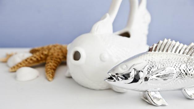 Pesci decorativi