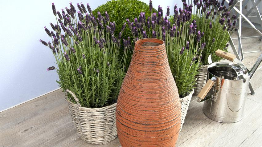 armadi da giardino in legno anfora fiori