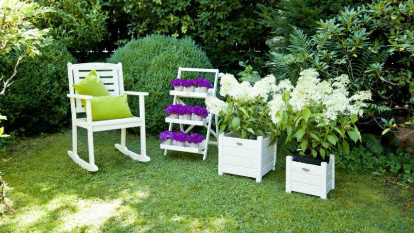 Préférence DALANI | Scopri come arredare un giardino piccolo LX84