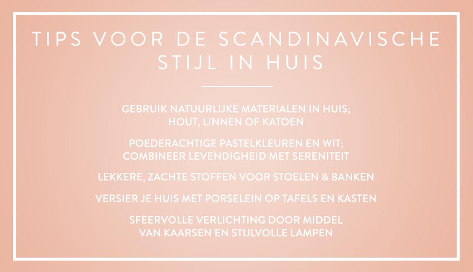 Skandi-banner-NL