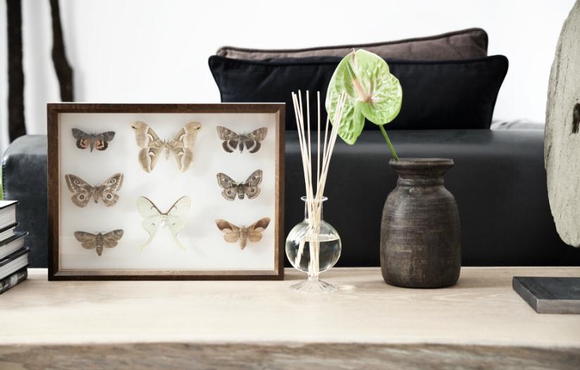 geurstokjes lijst vlinders vaasje plant groen zwarte kleur houten salontafel