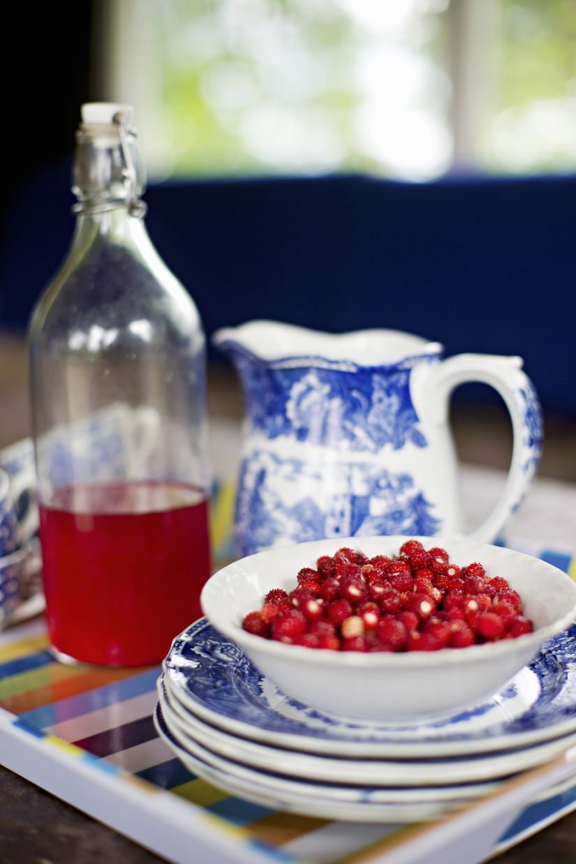 delfts blauw zomers servies met bessen en wijn