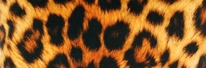 Panterprint dekbedovertrek print oranje bruin tijgerprint