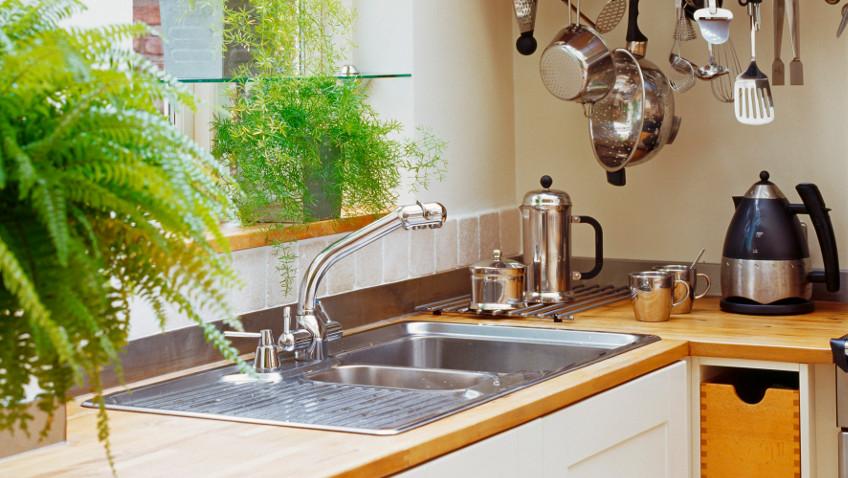 nowoczesna kuchnia pełna zieleni i czajnik elektryczny