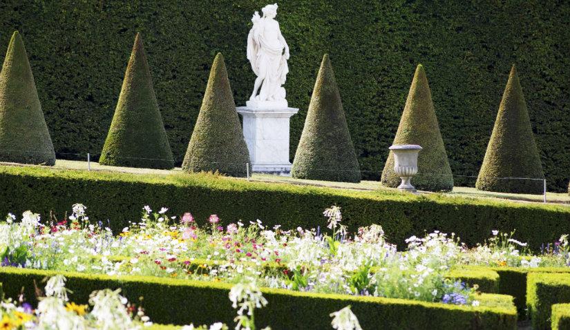 duży ogród minimalistyczny