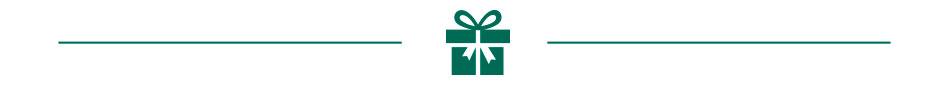 Christmas-DIY_Header-icon_PL