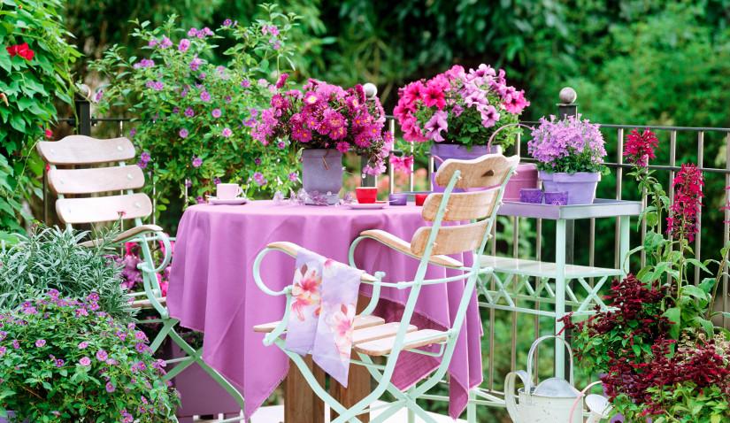 Pergola tarasowa tonąca w kwiatach