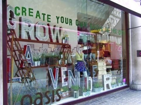 Oasis window designed by Hawkins Brown