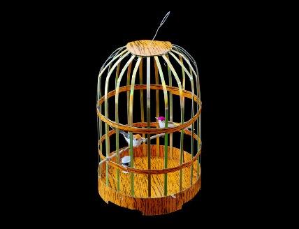 Bird cage, Kurt Tong