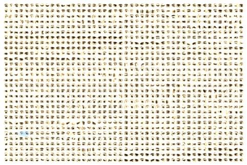 Golan Levin - Eyecode
