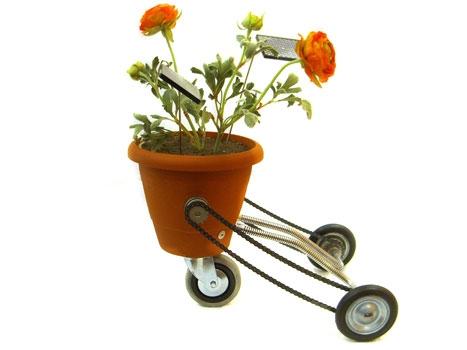 /v/h/f/Plantomatic.jpg