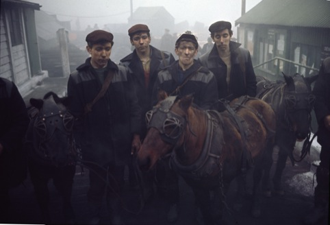 Miners and pit ponies, County Durham, photographed by John Bulmer, March 28, 1965