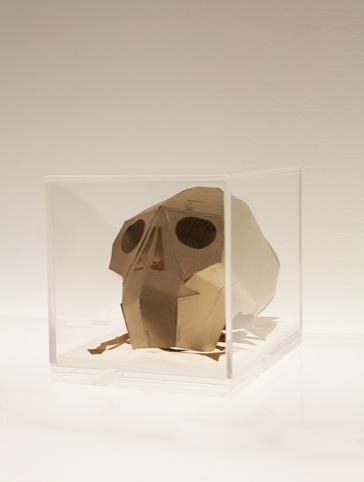 Skull, Hormazd Narielwalla
