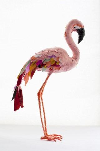 Abigail Brown's Flamingo