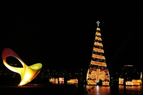 The Rio 2016 Paralympics identity with the Árvore Natal de Lagoa monument