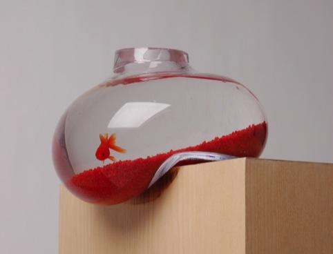Bubble Tank fish bowl, by Psalt