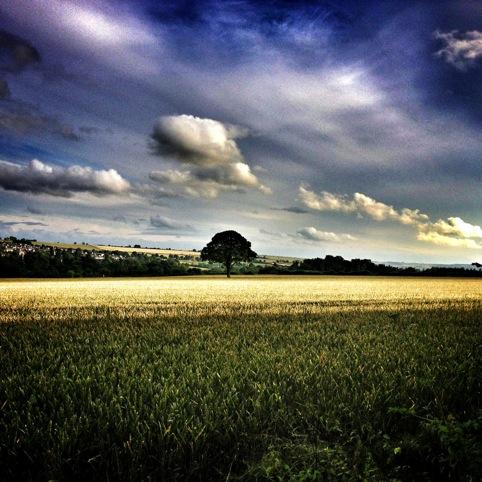 Image chosen by Nicola Edgington