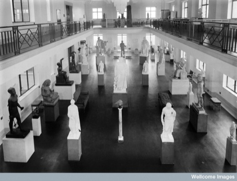 Wellcome museum, view of statuary hall showing various arrangements.