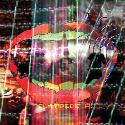Animal Collective, Centipede Hz