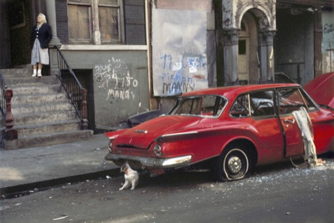 Helen Levitt Cat next to red car, New York, 1973