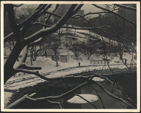Park in the Snow 1950s